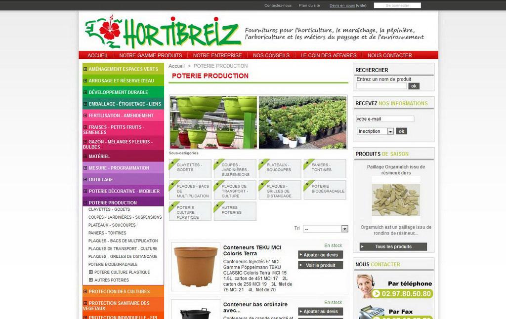 La création d'un site web !